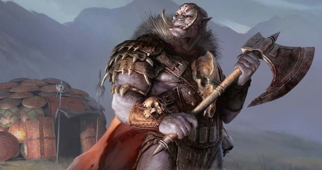 Image result for sword coast adventurer's guide